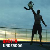 Описание сингла группы BRUTTO - Underdog